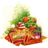 New Year Christmas tree and kitten watercolor illustration background Royalty Free Stock Photo