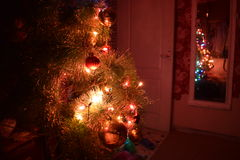 New Year. Christmas tree, photographed at night in the glow garlands Stock Photography