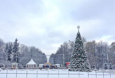 New Year Christmas tree in Sokolniki Park, Moscow. Royalty Free Stock Photography
