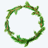 New year and Christmas wreath - fir tree on white isolated backg. New year and Christmas wreath - fir green tree on white isolated background. Watercolor Stock Images