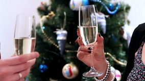 New Year Clinking Champagne Glasses witn Christmass tree. 