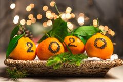 New Year 2020 is Coming Concep. T. Numbers written in Black Ink on the Oranges that are laying in the Basket with Pine Sticks and Xmas Lights on the Background stock photos