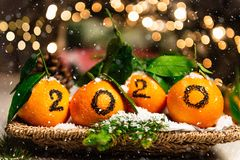 New Year 2020 is Coming Concep. T. Numbers written in Black Ink on the Oranges that are laying in the Basket with Pine Sticks and Xmas Lights on the Background stock image