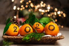 New Year 2020 is Coming Concep. T. Numbers written in Black Ink on the Oranges that are laying in the Basket with Pine Sticks and Xmas Lights on the Background stock photo
