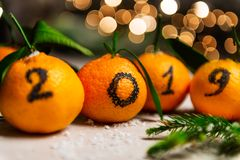 New Year 2019 is Coming Concept. Numbers written in Black Ink on the Oranges that are laying in the Basket with Pine Sticks and Xmas Lights on the Background royalty free stock images