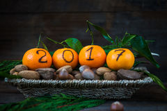 New Year 2017 is Coming Concept. Numbers written in Black Ink on the Oranges that are laying in the Basket with Pine Sticks and Nuts, Rustic Background royalty free stock image