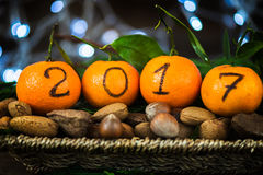 New Year 2017 is Coming Concept. Numbers written in Black Ink on the Oranges that are laying in the Basket with Pine Sticks, Nuts and Xmas Lights on the royalty free stock photo