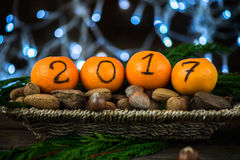 New Year 2017 is Coming Concept. Numbers written in Black Ink on the Oranges that are laying in the Basket with Pine Sticks, Nuts and Xmas Lights on the stock photos