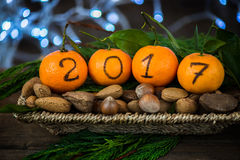 New Year 2017 is Coming Concept. Numbers written in Black Ink on the Oranges that are laying in the Basket with Pine Sticks, Nuts and Xmas Lights on the royalty free stock photos