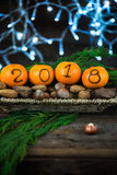 New Year 2018 is Coming Concept. Numbers written in Black Ink on the Oranges that are laying in the Basket with Pine Sticks, Nuts and Xmas Lights on the stock image