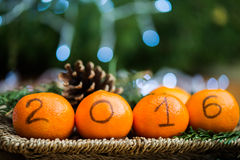 New Year 2016 is Coming Concept. Numbers written in Black Ink on the Oranges that are laying in the Basket with Pine Sticks and Xmas Lights on the Background stock photography