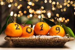 New Year 2019 is Coming Concept. Numbers written in Black Ink on the Oranges that are laying in the Basket with Pine Sticks and Xmas Lights on the Background royalty free stock photography