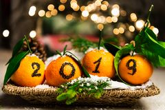 New Year 2019 is Coming Concept. Numbers written in Black Ink on the Oranges that are laying in the Basket with Pine Sticks and Xmas Lights on the Background royalty free stock photo