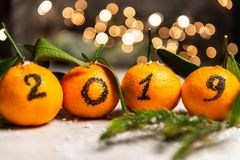 New Year 2019 is Coming Concept. Numbers written in Black Ink on the Oranges that are laying in the Basket with Pine Sticks and Xmas Lights on the Background stock photography