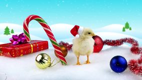 2017 New Year concept, yellow funny rooster (cock) in Santa hat. Standing near Christmas decorations, snowfall, copy space