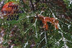 New Year 2018 congratulatory message with a Christmas fir-tree covered with snow in the forest. New Year 2018 congratulatory message with a Christmas fir-tree Royalty Free Stock Photography
