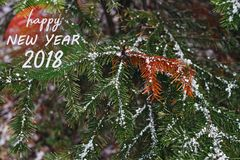 New Year 2018 congratulatory message with a Christmas fir-tree covered with snow in the forest. New Year 2018 congratulatory message with a Christmas fir-tree Royalty Free Stock Images