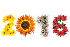 New Year 2016. 2016 New Year date formed from marigold flowers, sunflower, heather and poinsettia representing four season of the year stock images