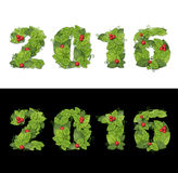 New year 2016. Date lined green leaves with drops of dew. On black and white background Stock Photo