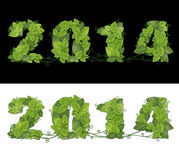 New year 2014. Date lined green leaves with drops of dew. Isolated on black and white background Royalty Free Stock Images