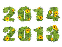 New year 2014, 2013. Date lined green leaves with drops of dew a. New year 2013. Date lined green leaves with drops of dew and yellow flowers. Isolated on white royalty free illustration