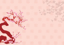 New Year day - Plum Blossom Stock Photography
