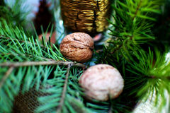 New Year decoration. New Year and Christmas decoration with green branches, golden candle and walnuts Royalty Free Stock Photography