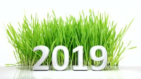 New year 2019 Digits and green grass on white background. 3d illustration. New year 2019 Number and green grass on white background. 3d illustration royalty free illustration