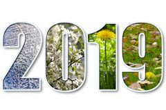 2019 new year. 2019 digits title with seasons background over white Royalty Free Stock Photo