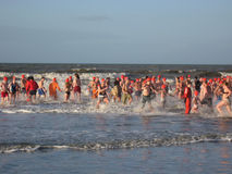 New Year Dive. In the North Sea, the Netherlands Royalty Free Stock Photo