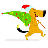 New Year dog character. A cheerful dog carries a decorated Chris Stock Image
