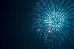 New Year Fireworks Royalty Free Stock Image