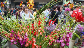 New Year flower market Stock Photos