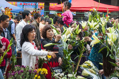 New Year flower market Royalty Free Stock Image