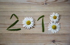 New year 2018 of flowers and green grass on wooden background. Stock Image