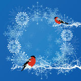 New Year frame with bullfinches Stock Image