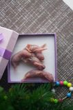 New year gift. rat baby. the newborn mouse is small. symbol. Of the Chinese new year 2020 . little pink mice together in a purple gift box stock image
