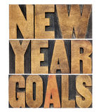 New Year goals Royalty Free Stock Image