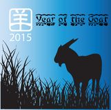 New Year of the Goat 2015 Stock Photos