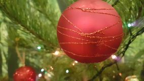 New year green Christmas tree toy red ball. New year, green Christmas tree, toy, red ball stock footage