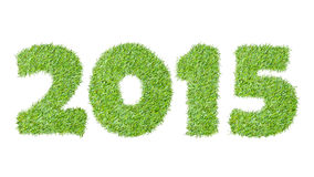 New year 2015 from the green grass Stock Photography