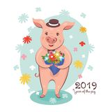 2019 Year of The Pig Greeting Card vector illustration