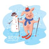 2019 Year of The Pig Greeting Card royalty free illustration