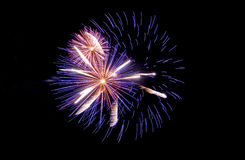 New year. Happy new year great firework Royalty Free Stock Images