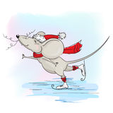 New year happy mouse or rat skates Stock Image