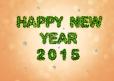 The new year 2015 has now come. At the turn of the year 2015 comes with many wishes vector illustration