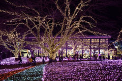 New Year Illuminations in Japan royalty free stock photo