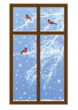 New Year illustration with bullfinches Stock Photo
