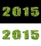 New Year 2015 is lined with green leaves.  Isolated Stock Photo