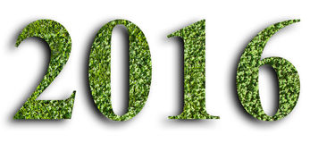 2016, New year made from the green grass, isolated on white background. 2016, New year made from the green grass, isolated on white background Royalty Free Stock Images